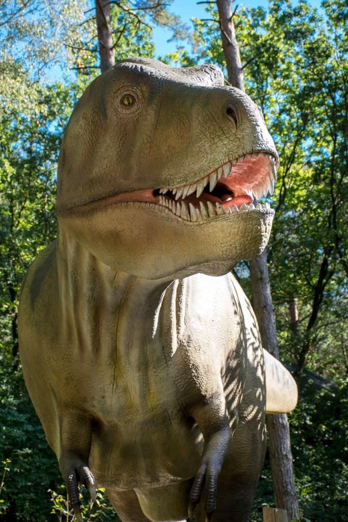 foto-6-t-rex_dsc5712