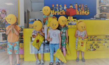 brick king legofeestje