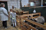 boerderij de deel
