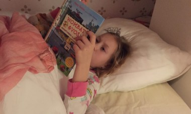wombat en vos boek review