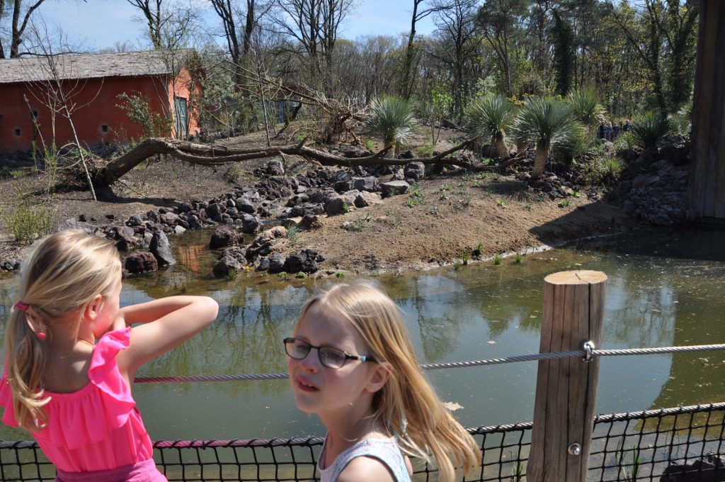 burgers zoo maki