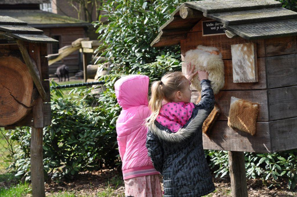 landal heideheuvel ervaring dierenweide