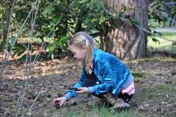 landal heideheuvel ervaring spelen in de natuur