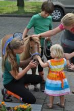 caileigh 2 pony1
