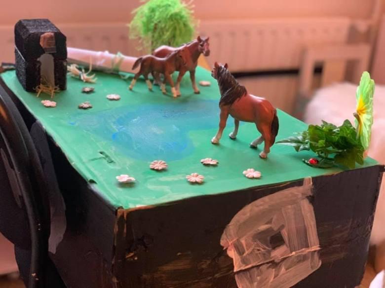 surprise weiland paarden
