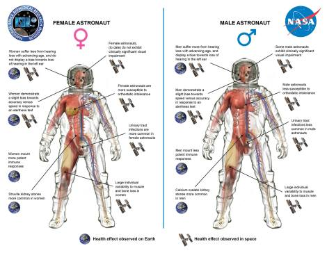 Sex.Gender Differences.in.Space