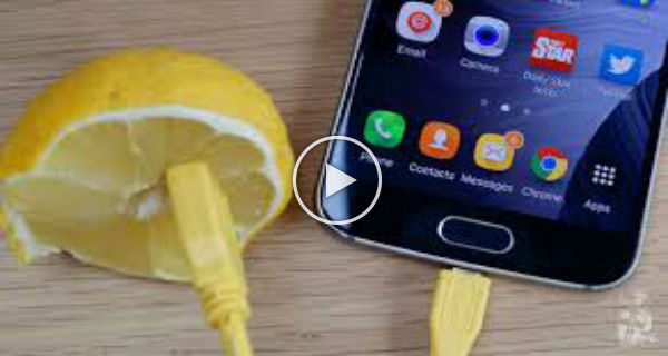 Charge Mobile Phone Battery With Lemon
