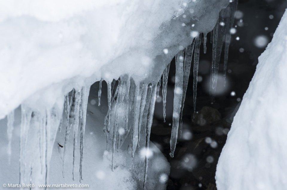 Cuando veas lo que sucedió durante el Phototrekking de invierno, ¡no podrás esperar al de primavera!