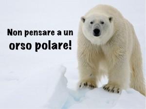non pensare a un orso polare!