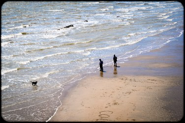 2016 Hastings Beach With Black Dog small