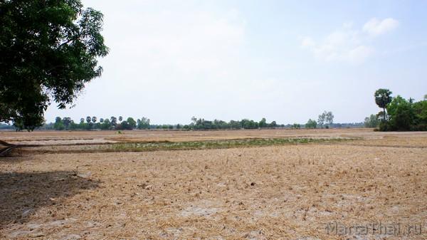 камбоджа в апреле