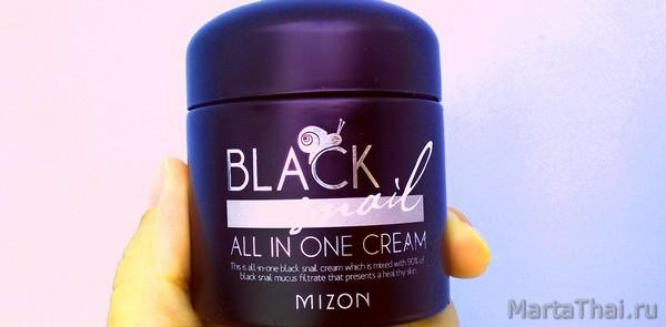 Mizon Black Snail all in one