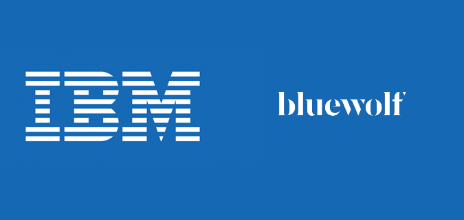 IBM Bluewolf logo