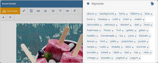 WebDAM Keyword Suggestion feature