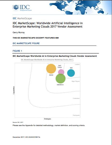 IDC MarketScape: Worldwide Artificial Intelligence in Enterprise Marketing Clouds 2017 Vendor Assessment