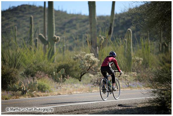 Cyclist_9706