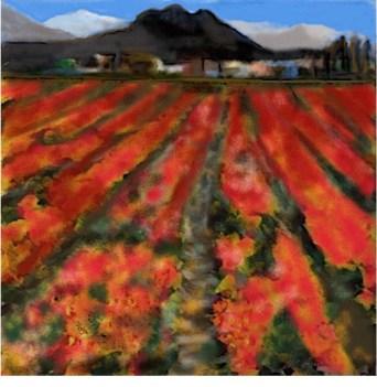Poppy Field (a nod to a study by artist Jeff Wilson)