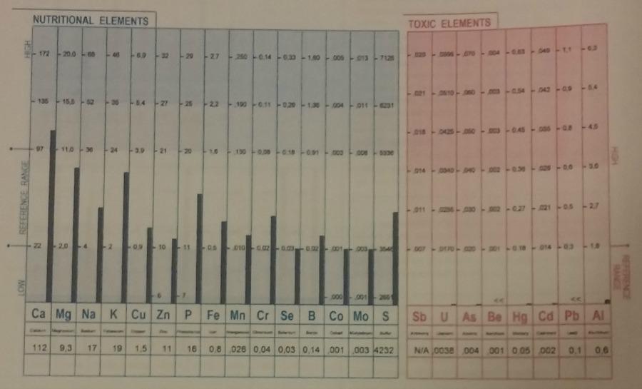 Rating dejtingsajter