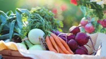 1551258798 dieta mediterranea np La dieta mediterránea y los buenos hábitos sitúan a España como el país más sano del mundo