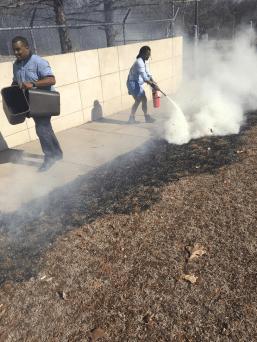 grass-fire-staff