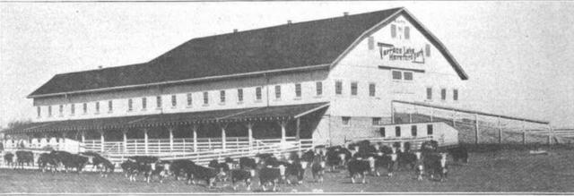 Terrace Lake Cattle Ranch