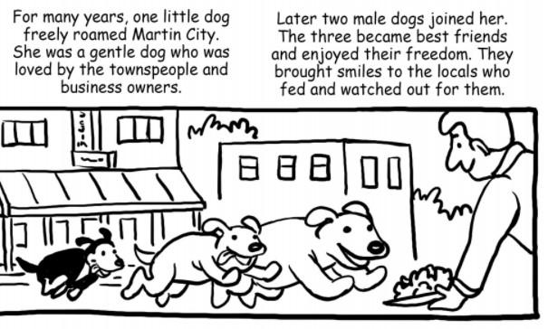 3 wild dogs 1