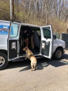 Martin City Dogs leaving