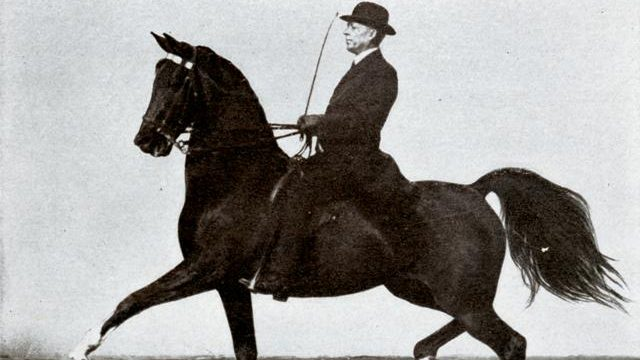 Former slave became famous for his prize-winning horsemanship. He put the American Royal Horse Show on the map