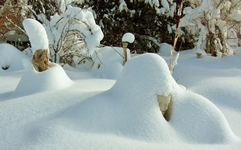 A Snowgoyle wades his way through a snowy Birdhaven