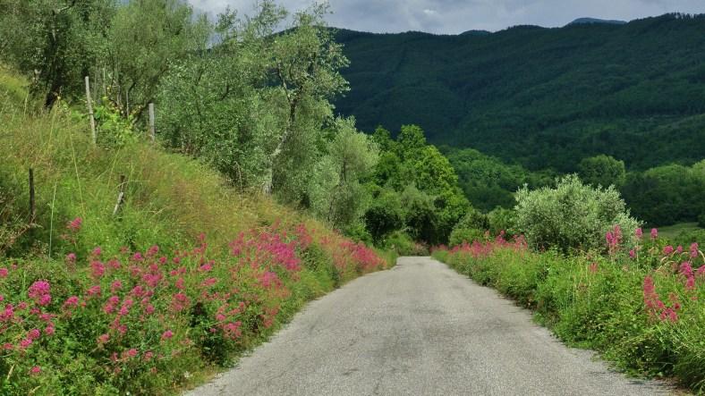 Serchio Valley, Garafagnana, Tuscany, Italy