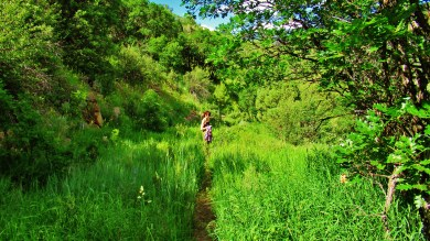 Kris Cooney hikes the McClure Pass Wagon Road Trail, Along The Aspen Marble Detour