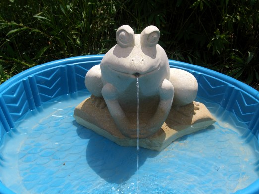 Solar Frog Fountain