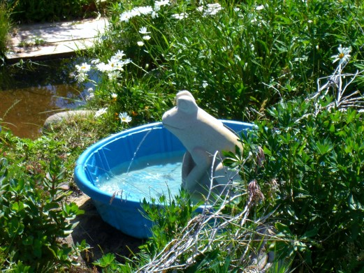 Solar Frog / The Sculpture Garden @ martincooney.com
