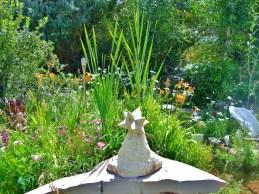 The Star / The Sculpture Garden @ martincooney.com