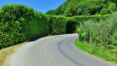 San Rocchinl, Borgo a Mozzano, Tuscany, Italy