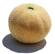 Melon pour le Kavun Dolmasi (melon farci)