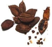 Cardamome noire pour le Bœuf Karahi