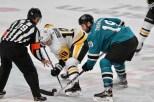 San Jose Sharks vs Pittsburg Penguins Photos by Guri Dhaliwal (Martinez News-Gazette)