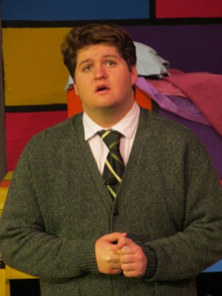 Lucas Haller as Mr. Harry MacAfee