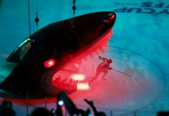 San Jose Sharks vs Las Vegas Knights Game 2 NHL Playoffs Photos by Guri Dhaliwal (Martinez News-Gazette)
