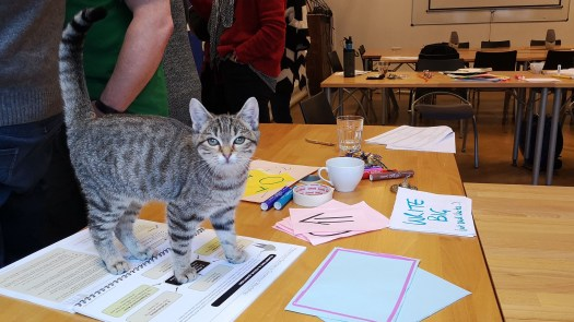 ORID the kitten at Group Facilitation Methods training in Brussels