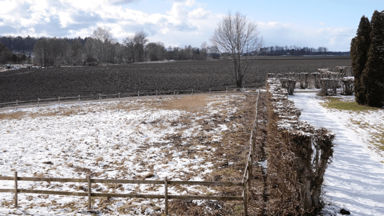 Påskvädret 2015