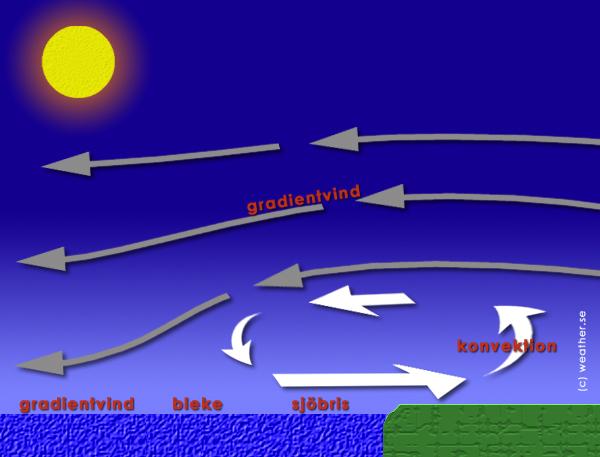 Hur påverkas sjöbrisen av gradientvinden?