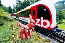 Globi-Express - Zentralbahn - Hasen