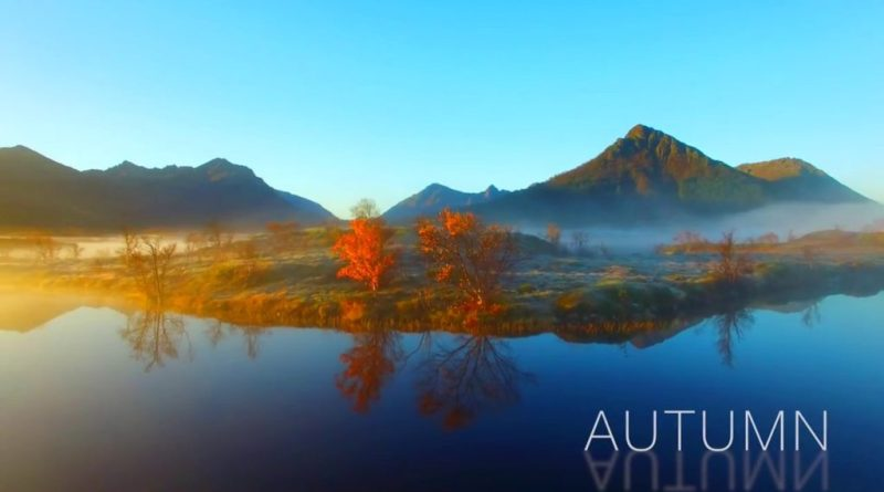 Image result for autumn in norway