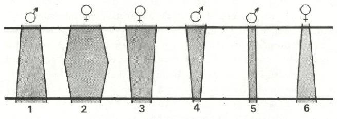 L76-10