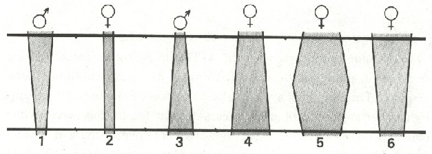 L76-2
