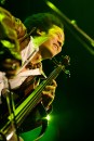 Jazzkaar 2011, foto Mart Sepp-8