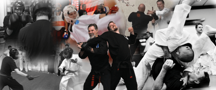 Marty Martin Karate Online Training Banner