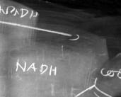 L44667 blackboard#2